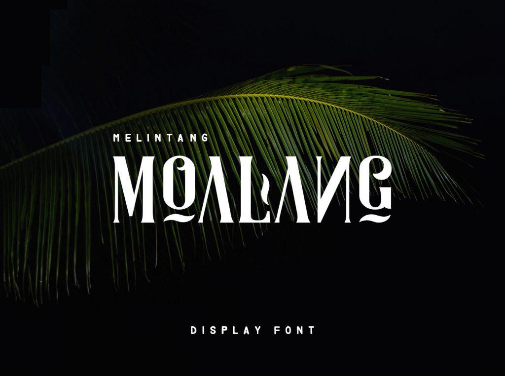 Moalang font - 1