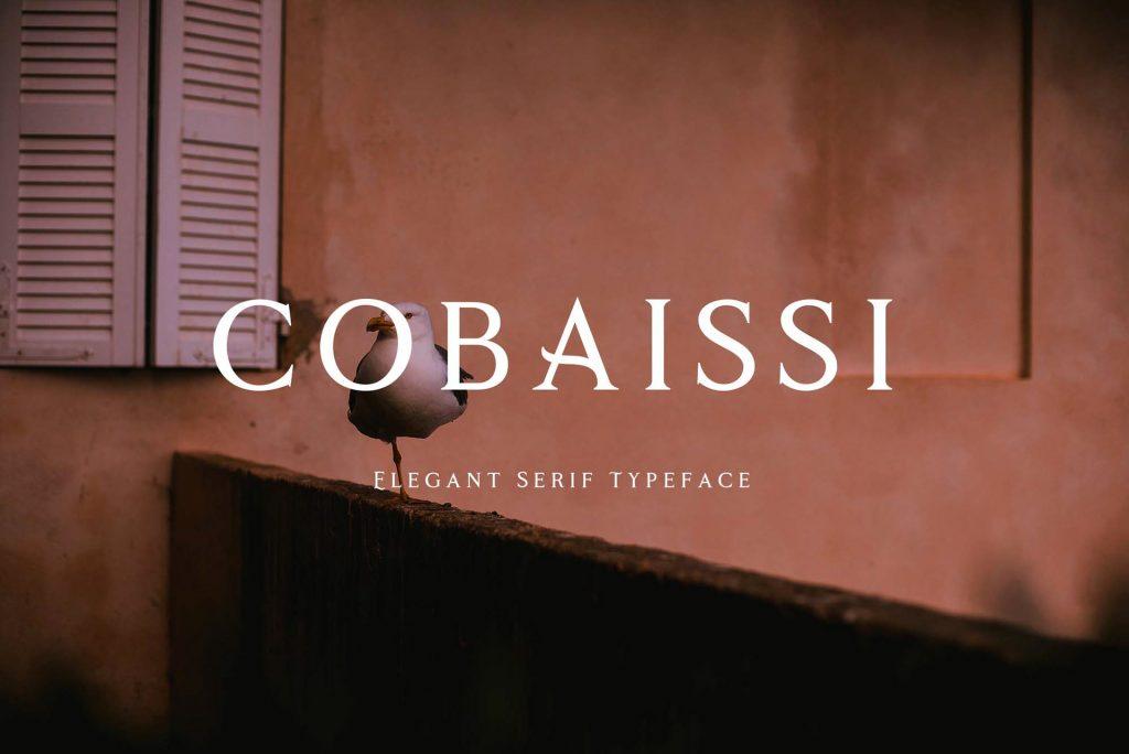 Cobaissi Elegant