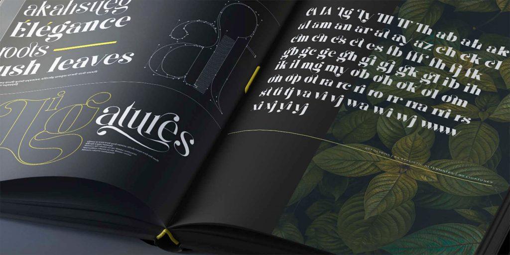 Kage Serif Font Book