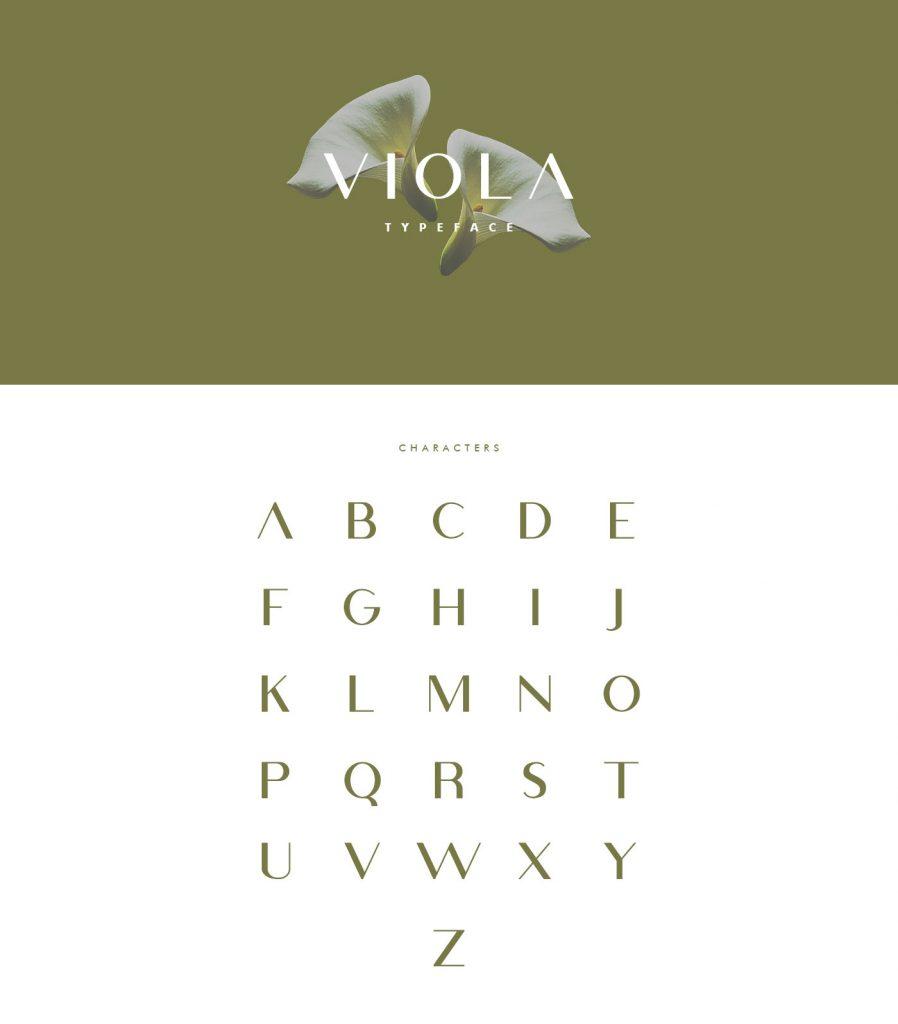 Viola Typeface Sans Serif